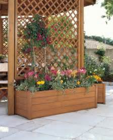 planter trellis great small gardenbalconydeck gardening