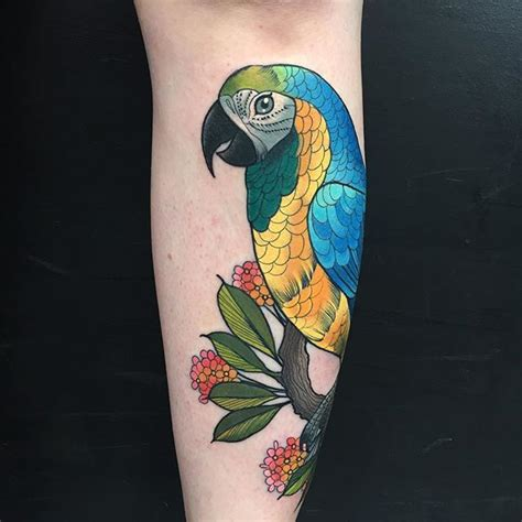 pirate parrot tattoo designs best 25 parrot ideas on parrot drawing