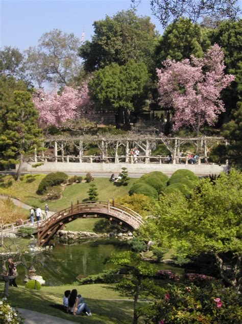 The Huntington Botanical Gardens Americans Imitated Japanese Gardens After 1893 Columbian Exhibition In Chicago American Gardening