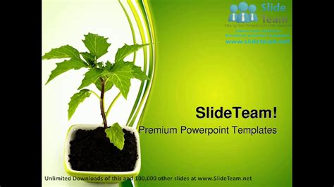 Growing Green Plant Nature Powerpoint Templates Themes And Backgrounds Ppt Designs Youtube Plant Powerpoint Templates Free