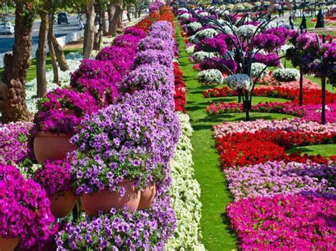 Beautiful Flowers In Garden Beautiful Flower Garden Garden Gardens Beautiful And Nature