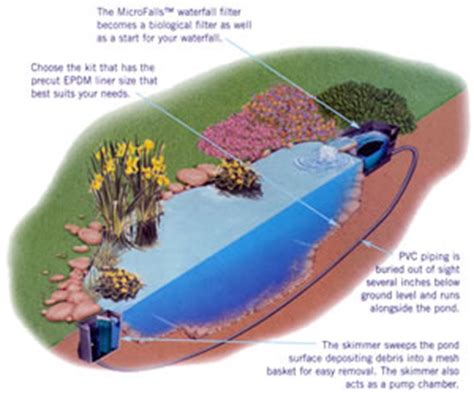aquascape micropond kit aquascape ontario ltd changing the way canada builds ponds