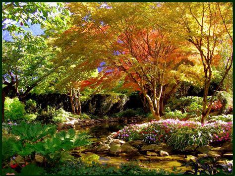 autumn garden 13 autumn gardening tips elfant wissahickon philadelphia