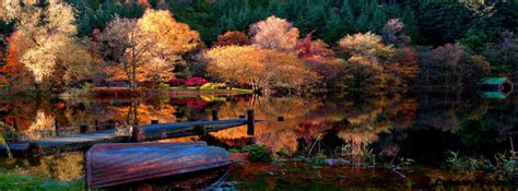 rock the boat forrest lyrics scenic autumn lake cover photos for facebook scenic