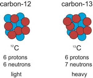 How Many Protons Are In Carbon 12 So You Wanna Be A Paleoecologist The Integrative