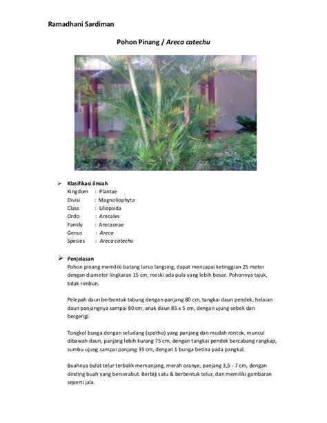 Tabung Diameter 8cm Tinggi 18cm biologi 3 tumbuhan