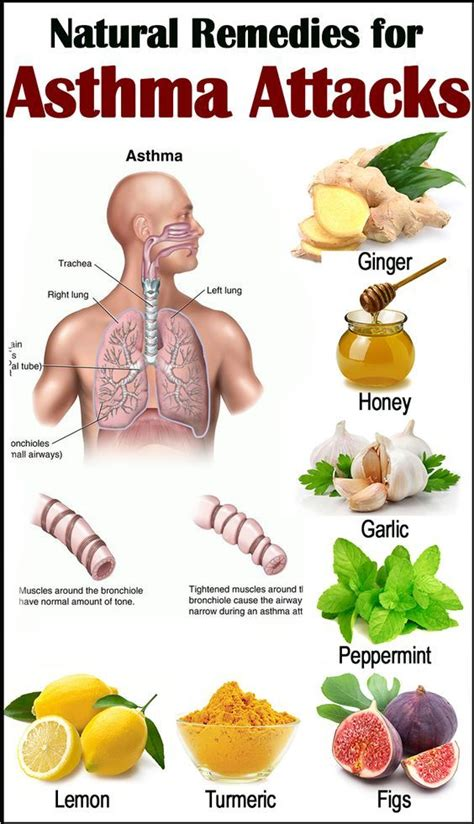 Home Remedies For Asthma Cough At by 25 Best Ideas About Home Remedies On