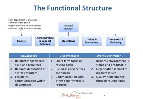 purpose and generic structure of biography a functional organizational structure linkedin