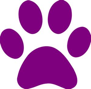 purple paws asking families to foster animals | kpcw