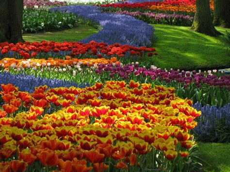 Most Beautiful Flower Garden 10 Most Beautiful Made Flower Gardens In The World