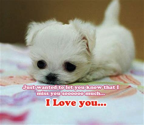 imagenes de i miss you miss you dearly free miss you ecards greeting cards