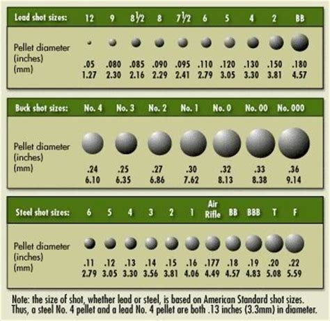 bullets: sizes, calibers, and types [definitive guide