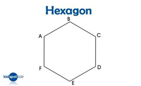 What Is The Name Of A 3d Hexagon Quora - number names worksheets 187 images of hexagons free