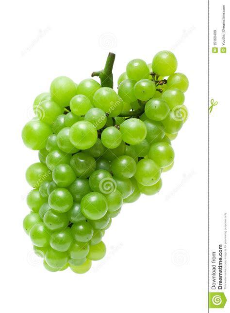 imagenes de uvas vector uva verde imagen de archivo imagen de fructuoso