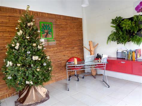 yokol green renta de 225 rboles de navidad naturales