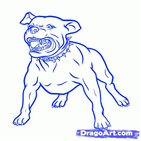 how to a pitbull to be a service step 6 how to draw a pitbull