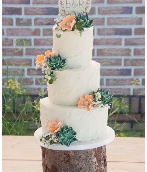 Wedding Cake With Succulents by Succulent Cakes Pretty To Eat Cakecentral