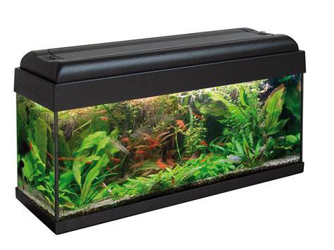 aquarium hood design advance 80 aquarium 80x30 glass aquarium complete with