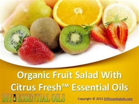 fresh the essential guide to fresh fruit and vegetable juicing books 17 best images about essential oils on