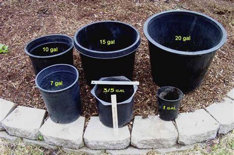 gallon garden planters corner lot backyard patio ideas