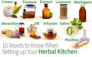 how to set up your kitchen wellness articles page 3 herbazest