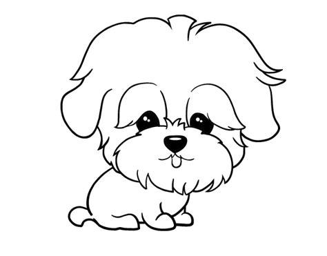 imagenes de animales faciles de hacer dibujos faciles para colorear de animales archivos