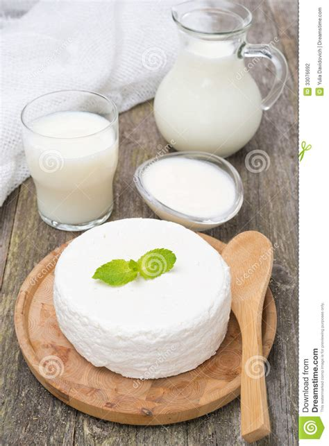 Cottage Cheese From Milk by Fresh Cottage Cheese Yogurt And Milk Stock