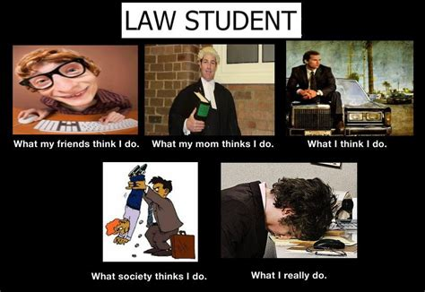 Student Memes - law student meme www pixshark com images galleries