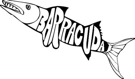barracuda fish coloring page barracuda fish coloring pages for kids best place to color