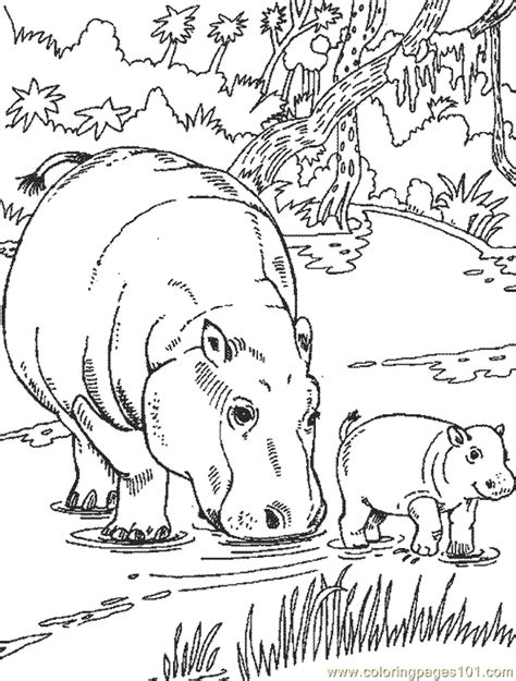 hippo coloring pages online coloring pages hippo coloring page 04 animals