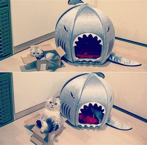 Shark Bed by Shark Bed Pet