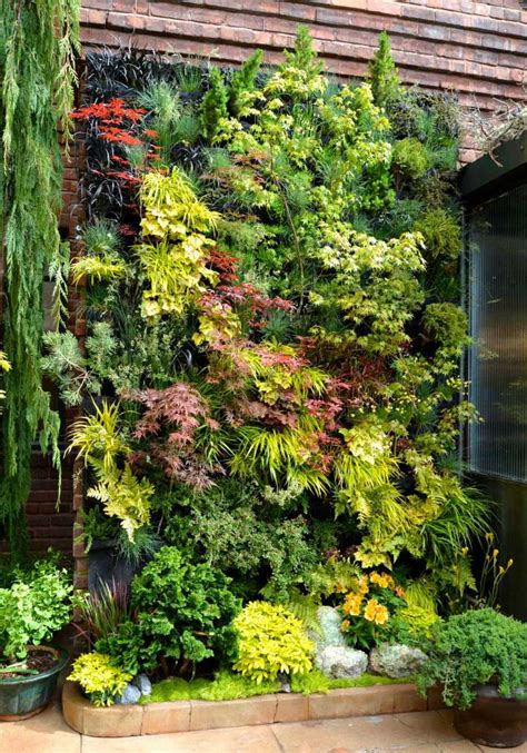 plants for wall gardens the 50 best vertical garden ideas and designs for 2018