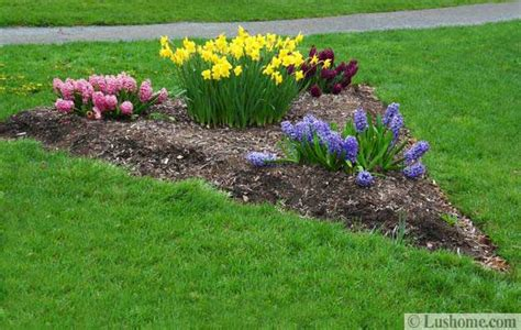 spring landscaping tips flower garden designs perennial flower garden design plans