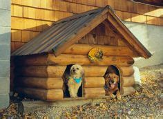crazy dog houses 1000 images about crazy dog houses on pinterest dog houses amazing dog houses and