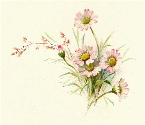 free floral images free vintage floral art prints free flower graphic