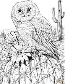 free owl coloring pages for adults printable coloring pages printable owl