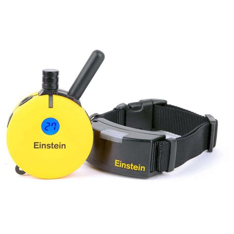 electronic collars einstein et 500a remote e collar trainer for small to medium sized dogs