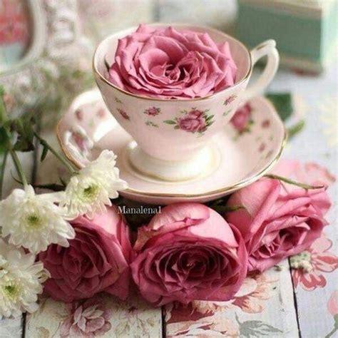 autentico chalk paint dublin 1000 images about teacups flowers on