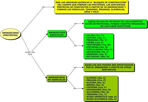 proteinas e amino cidos clasificaci 243 n amino 225 cidos html