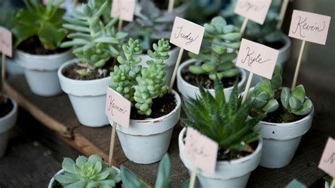 Wedding Favors Ideas Diy by Easy Wedding Favor Ideas You Can Diy Stylecaster