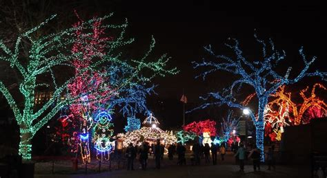 experience lincoln park zoo at christmastime apartments com