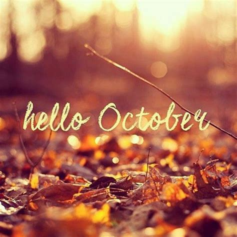 hello october pictures photos and images for