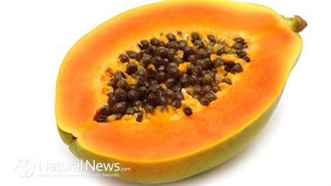 Papaya Seed Detox Recipe by 13 Best Images About Power Of The Seed On Hemp