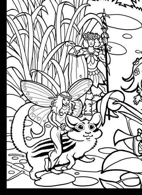 world of fairies coloring book books welcome to dover publications