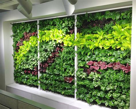 vertical wall planters vertical wall garden vertical