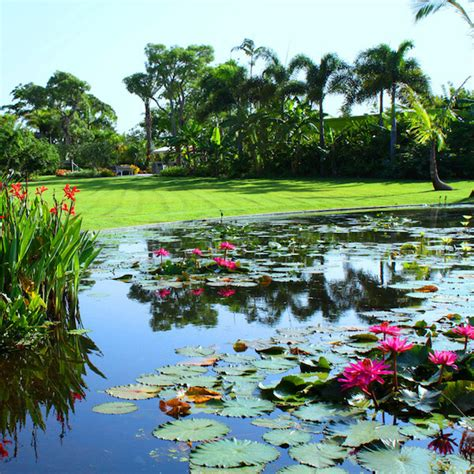 Botanical Garden Naples Fl Naples Botanical Garden Information Must Do Visitor Guides