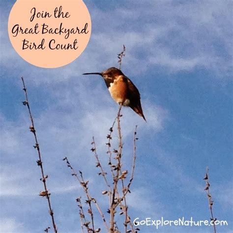 cornell backyard bird count cornell backyard bird count 28 images will el ni 241 o