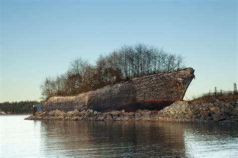boat salvage yard washington state 139 best images about trees growing out of or into on
