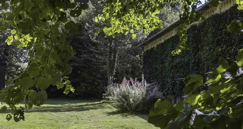 Pilze Englischer Garten by Wald Und Garten Gut Falkenberg