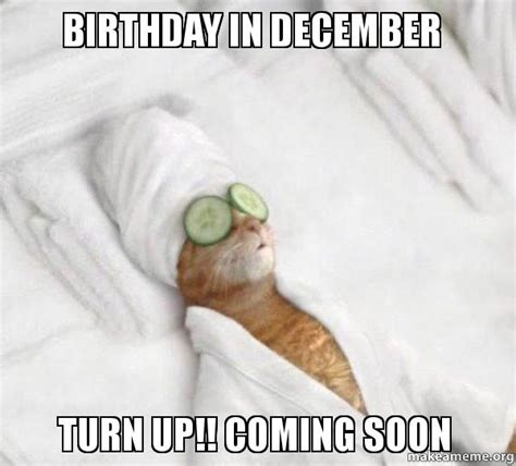 December Birthday Meme - birthday in december turn up coming soon pered cat